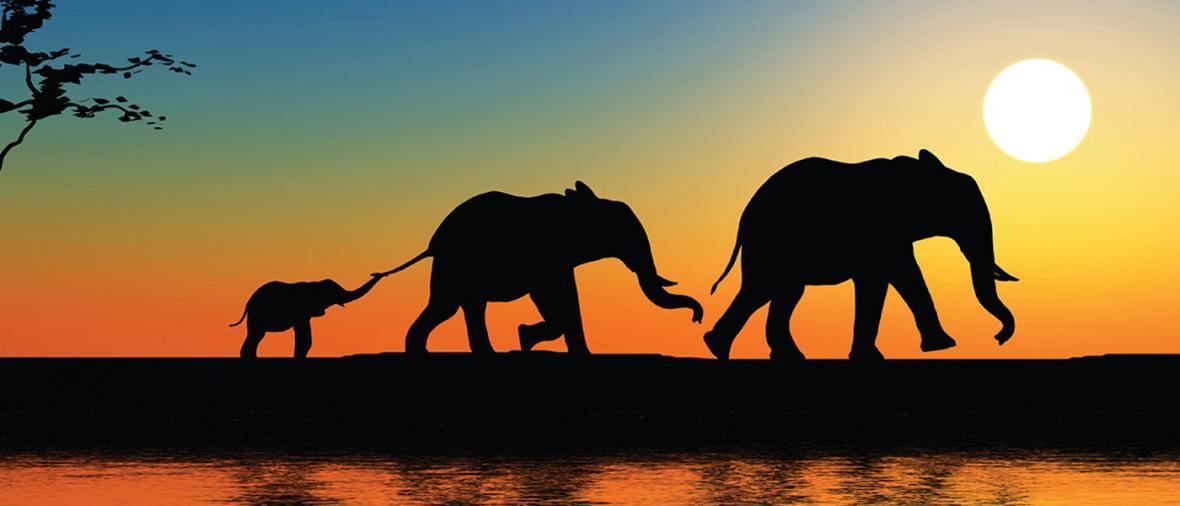 5 مکان عالی برای گردش های آبی در آفریقا