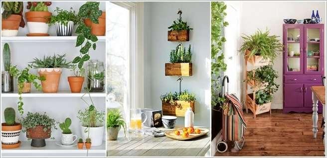 چند نکته طلایی برای نگهداری از گل و گیاه در آپارتمان؛ایده هایی ساده برای ایجاد فضای سبز در خانه