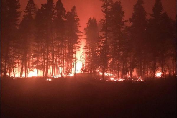 مقاله: آتش نشان های مکزیکی به یاری کانادایی ها آمدند