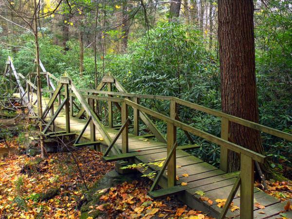 مسیرهای برتر پیاده روی در پنسیلوانیا