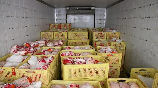 عرضه روزانه 1200 تن مرغ گرم در تهران، گرانی مرغ به مسائل سیستم توزیع باز می شود
