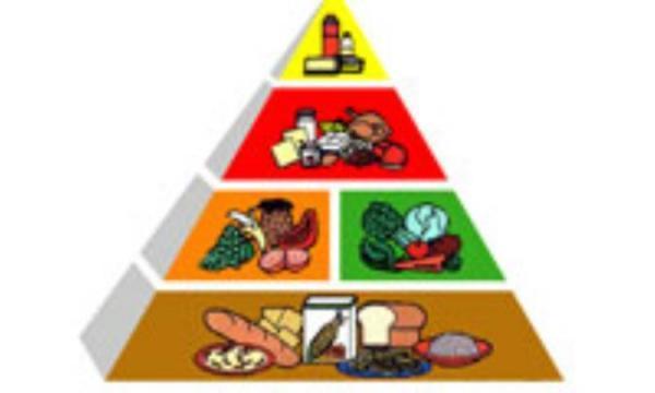 غذای سالم برای داشتن فکر سالم